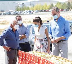 """Sus Majestades los Reyes en la zona de recolección de peras de la Cooperativa de frutas """"La Carrichosa"""""""