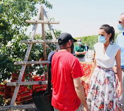 """Sus Majestades los Reyes conversan con un trabajador de la Cooperativa de frutas """"La Carrichosa"""""""